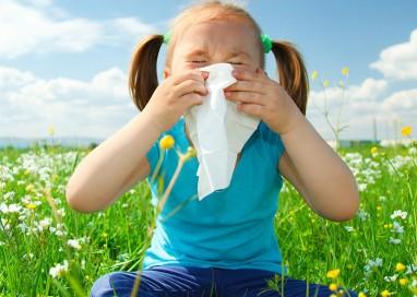 Allergie, cosa sono e quando vengono