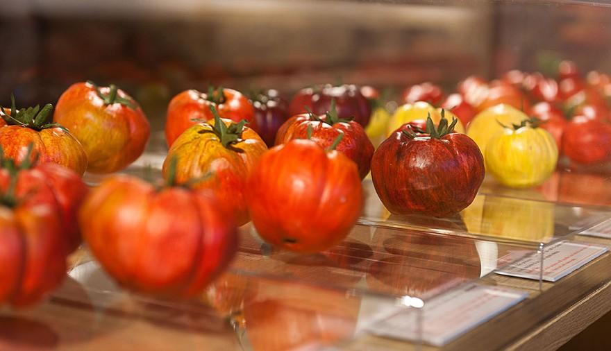 Giornata mondiale dell'alimentazione ai Musei della Pasta e del Pomodoro