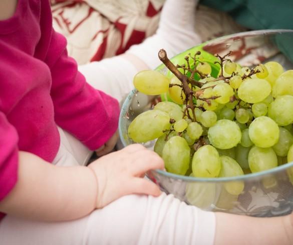 Musei del cibo: si parte con i laboratori del Vino
