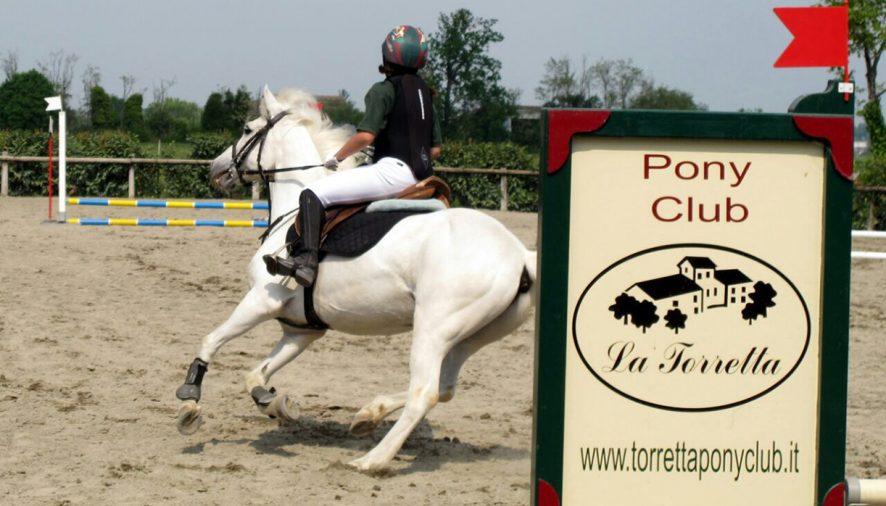 UN PONY PER DIVENTARE GRANDI, è il momento di salire a cavallo