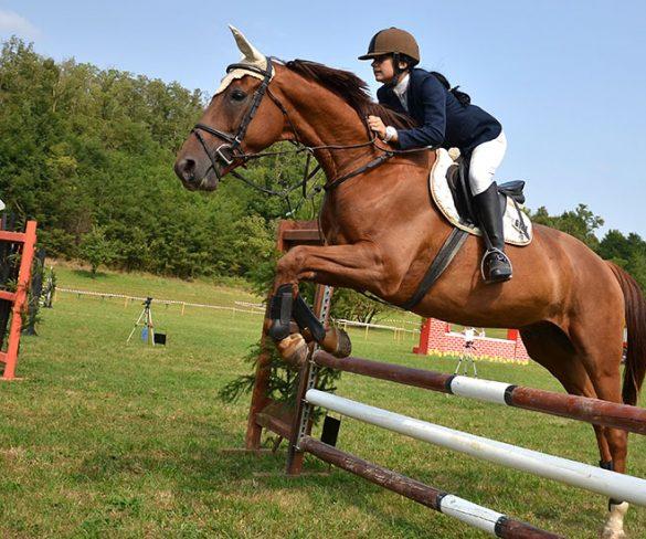 Scuola di Equitazione: la Gara Sociale e il Campus di Natale