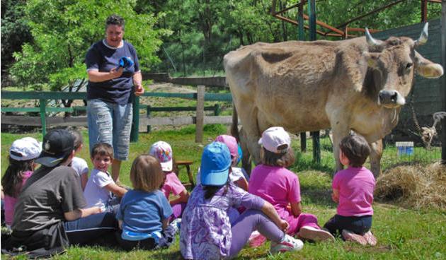 Bambini alla scoperta degli animali e della natura: ecco la Festa di Primavera!