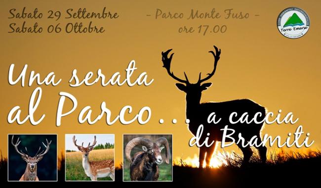 A caccia di Bramiti: una serata tra gli animali del Parco del Monte Fuso
