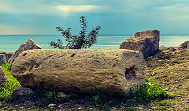 La Scienza in Tour - alla ricerca del mare antico e dei suoi abitanti