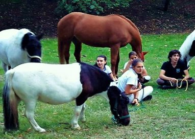 Un'estate a cavallo! Al Cinghio proposte per bambini di tutte le età!