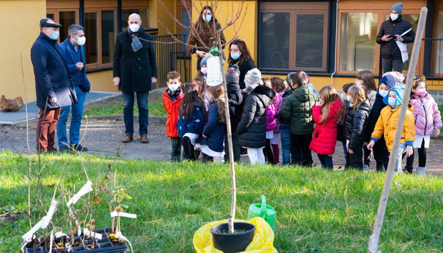 """""""Mettiamo radici per il futuro"""": fornitura di alberi gratuiti per le scuole emiliane"""